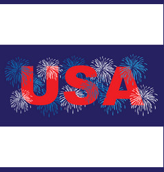 Usa with fireworks vector