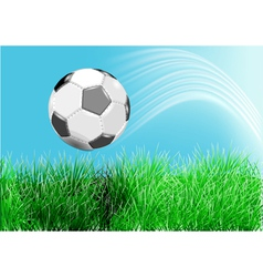 Football on green grass vector