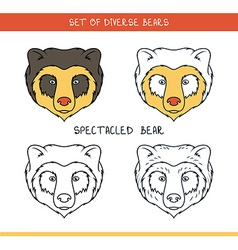 Spectacled bear set isolated face heads bear in vector