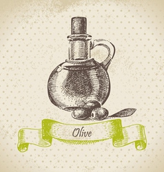 Olive oil hand drawn vector image