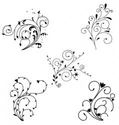floral decoration vector image