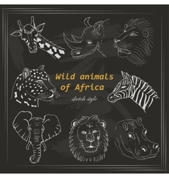 Set of wild animals of Africa in sketch style on a vector image