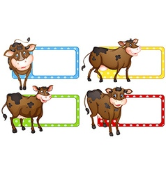 Square labels with brown cows vector image vector image