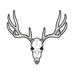 White tail deer skull vector image