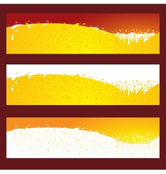beer splash baner header element vector image