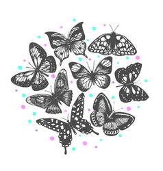 Composition with hand drawn butterflies vector