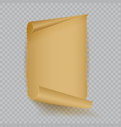 Empty realistic sheet of parchment paper vector