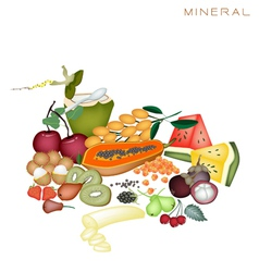 Health and nutrition benefits of mineral foods vector
