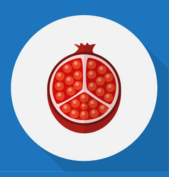 Of berry symbol on pomegranate vector