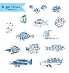 Cute summer fishes vector image vector image
