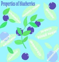 Properties of blueberries vector