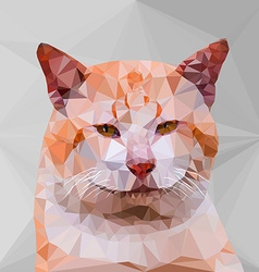 Low poly geometric of cat vector