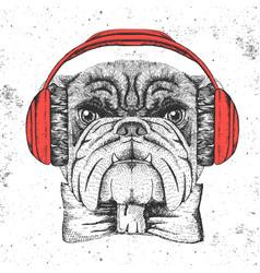 Hipster animal bulldog hand drawing muzzle of vector