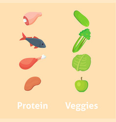 food high protein isolated healthy veggies vector image vector image