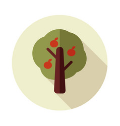 Fruit tree flat icon vector