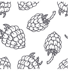 hand drawn outline seamless pattern with raspberry vector image