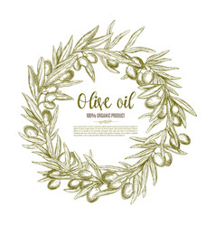 Olive wreath sketch label for oil and food design vector