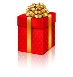 Red gift isolated on white for Birthday vector image