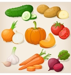 Set of vegetable vector image vector image