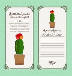 Vintage label with gymnocalycium plant vector