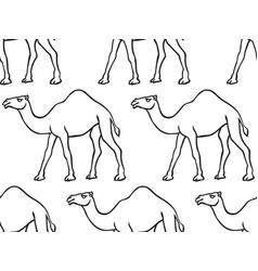 camel contour pattern vector image