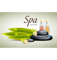 Spa background of black pebble and bamboo leaves vector