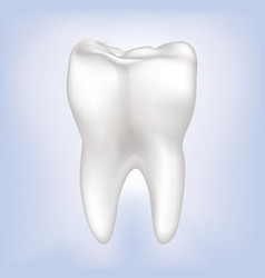 tooth isolated teeth white sign dental medical vector image