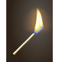 Realistic burning match vector