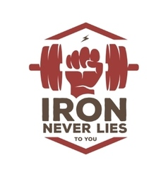 Iron never lies to you motivational poster or t vector