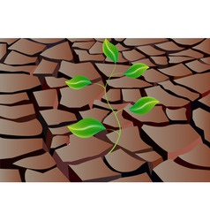 Sprout in dry land vector
