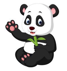 baby panda cartoon vector image vector image