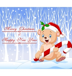 Cartoon funny baby bear holding christmas candy vector