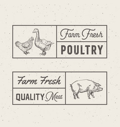 farm fresh poultry and meat abstract signs vector image