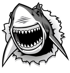 Great White Shark ripping with opened mouth vector image vector image