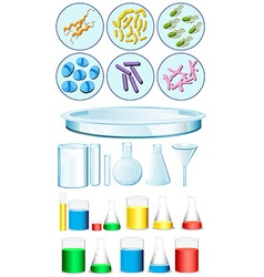 Set of science containers and bacteria on tray vector