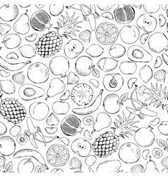 Fruits doodle seamless vector
