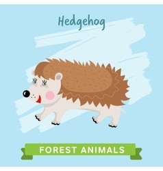 Hedgehog  forest animals vector