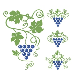 Grapes icon set vector