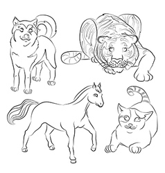 cat dog horse tiger vector image