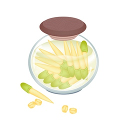 Delicious pikled baby corns in a jar vector