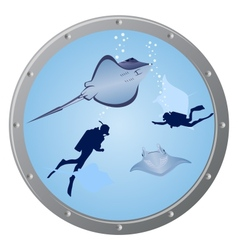 divers and stingrays vector image