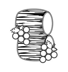 Line barrels of wine with grapes vector