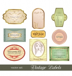 set retro variation vintage labels vector image vector image
