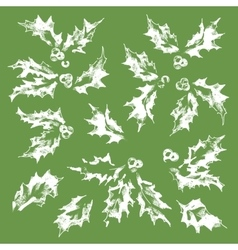 The collection of snow-covered holly leaves vector
