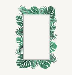 rectangular border frame green tropical leaves vector image
