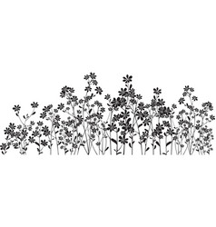 Silhouette wildflowers on white vector