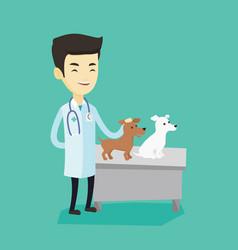veterinarian examining dogs vector image
