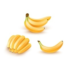 Set of isolated banana fruits vector