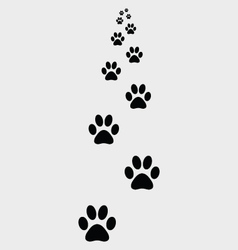 ootprints of dogs 2 vector image vector image