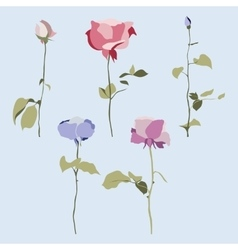 set of flowers multicolored roses with vector image vector image